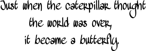 Q065A-Just_when_the_caterpillar_thought